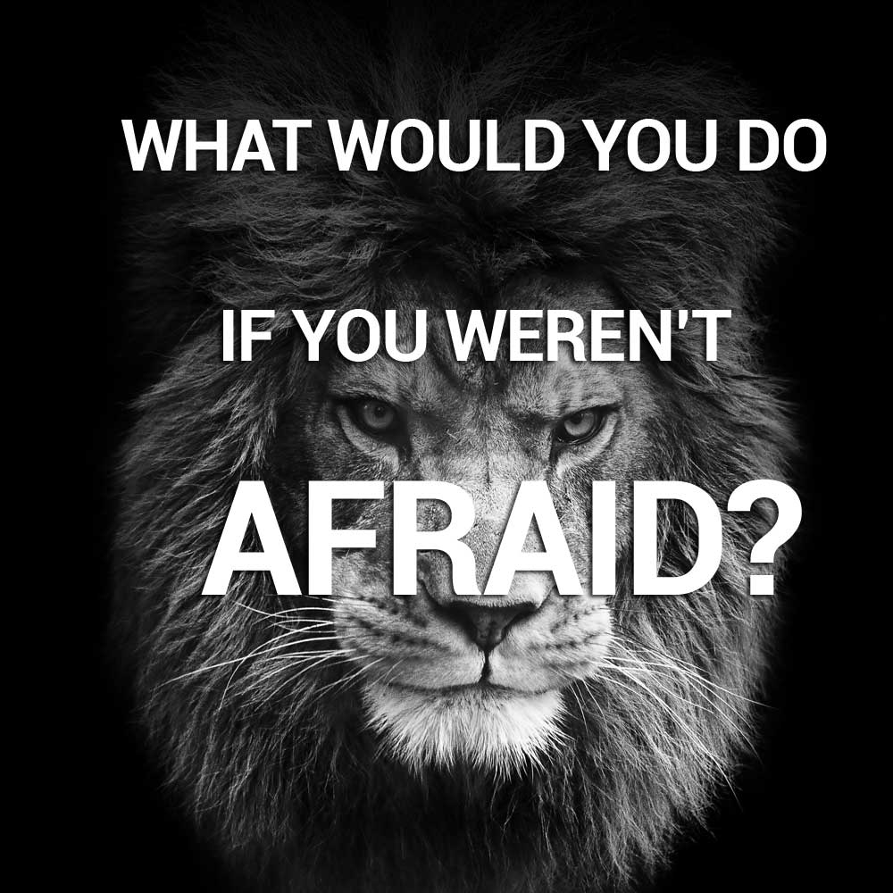 what would you do youtube - 1000×1000